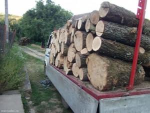 lemn-de-foc