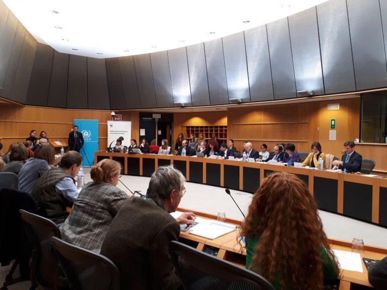 Ministerul Apelor și Pădurilor a prezentat raportul privind tăierile ilegale în Parlamentul European