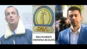 DNA Negulescu Cosma