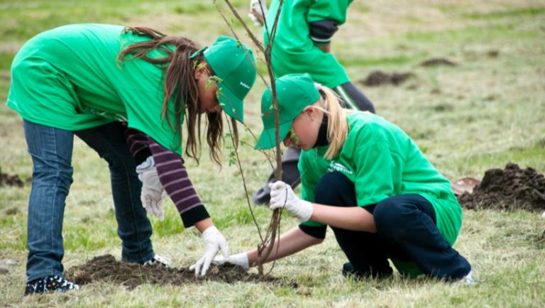 S-a dat startul campaniei de împăduriri de primăvară