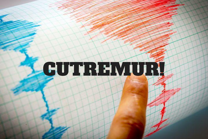 ULTIMĂ ORĂ/ Cutremur puternic în Transilvania