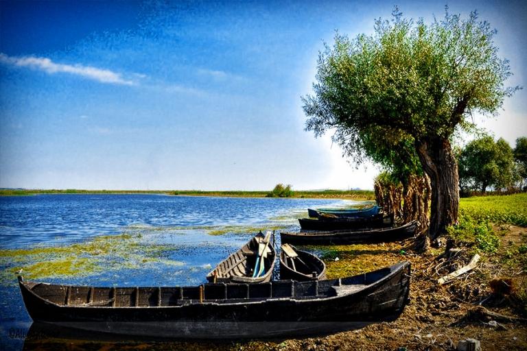 News ALERT / Comisia Europeană a întrerupt plăți de 1 miliard de euro destinat salvării Deltei Dunării. Se investighează modul în care au fost cheltuiți banii