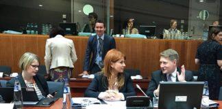 Ioana Bran Consiliul UE
