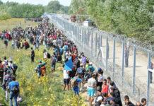 emigranți