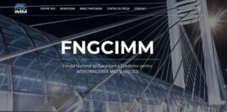 Fondul National de Garantare a Creditelor IMM