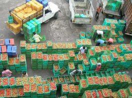 controale fructe