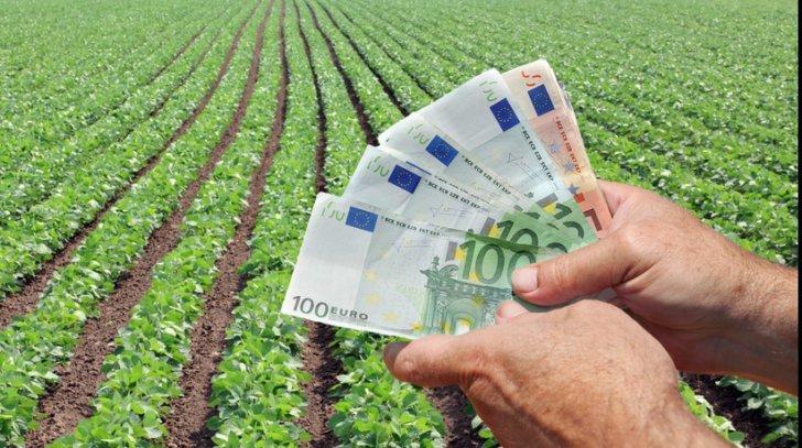 Comisia Europeană a aprobat o schemă de ajutor de stat pentru sprijinirea crescătorilor de bovine afectați de pandemie