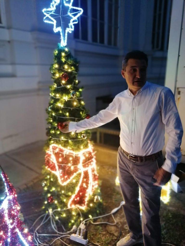 Primarul Aradului cumpără brad de Crăciun în luna lui Cuptor. Bradul are garanție de 10 ani